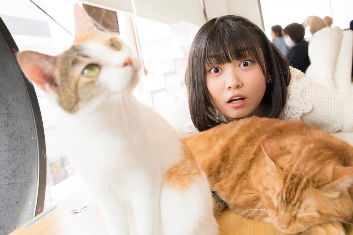 小澤愛実「猫に愛されることはできるのか」【写真48枚】【連載】ラストアイドルのすっぴん!vol.19の画像042