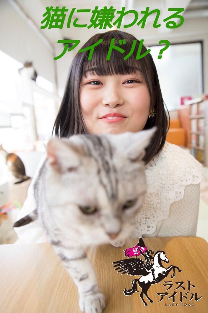 小澤愛実「風船屋さん、猫カフェで愛を知る素敵な出会い」【写真57枚】【連載】ラストアイドルのすっぴん!vol.18の画像