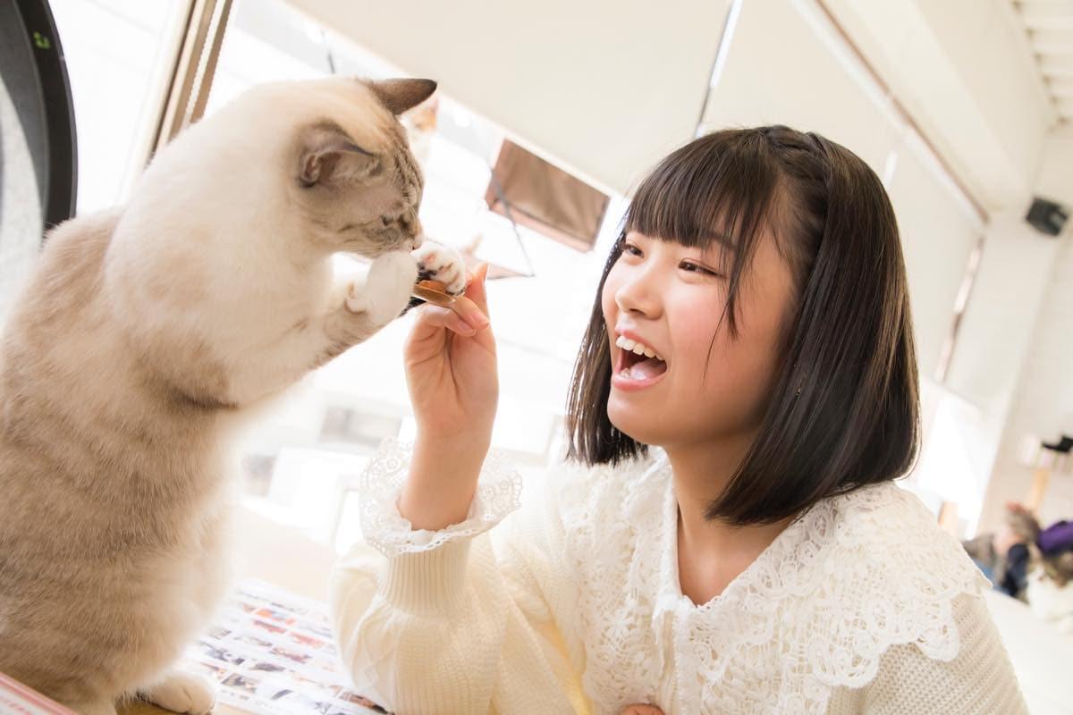 小澤愛実「猫に愛されることはできるのか」【写真48枚】【連載】ラストアイドルのすっぴん!vol.19の画像027