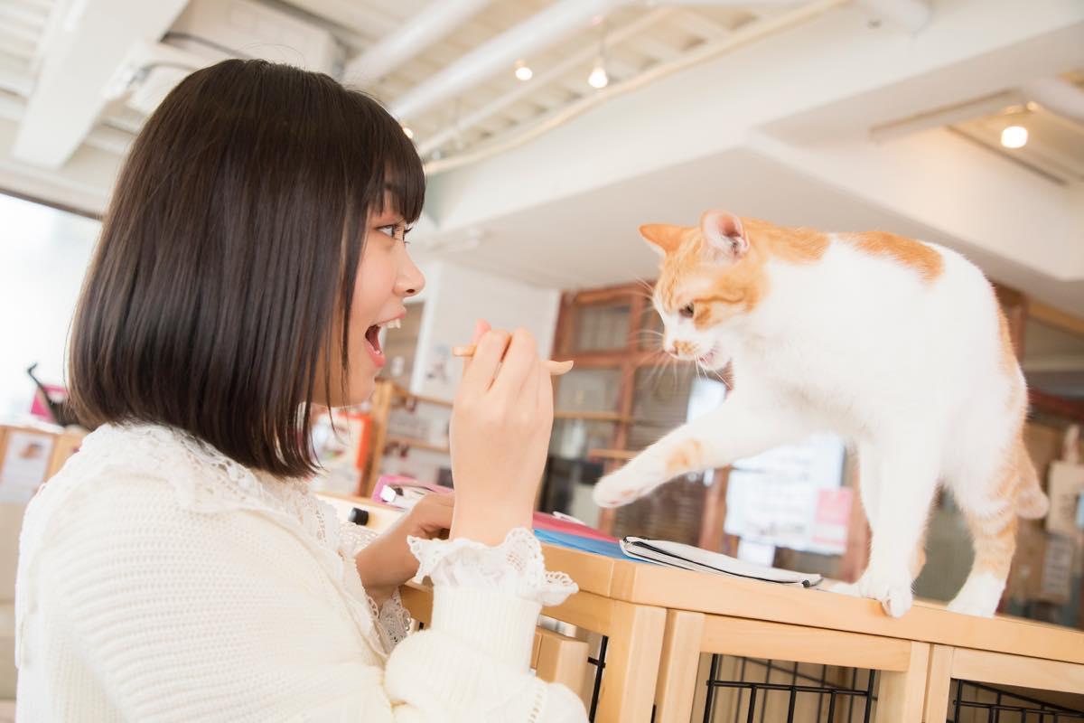 小澤愛実「猫に愛されることはできるのか」【写真48枚】【連載】ラストアイドルのすっぴん!vol.19の画像009
