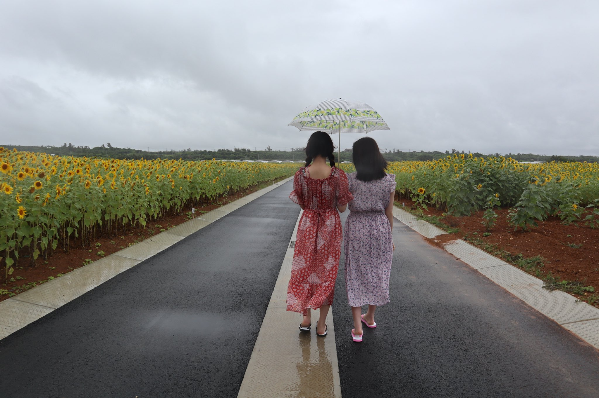 AKB48下尾みう「撮影楽しかったな」山根涼羽との水着ツーショットにファン興奮【画像4枚】の画像004